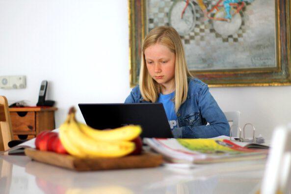 Best of - Schülerbeiträge im Fernunterricht